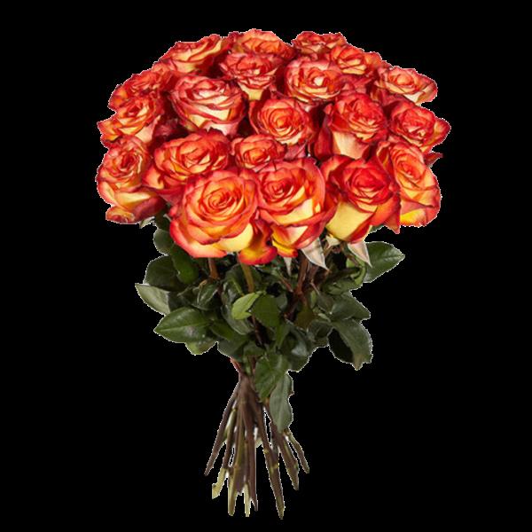 Пятнадцать роз