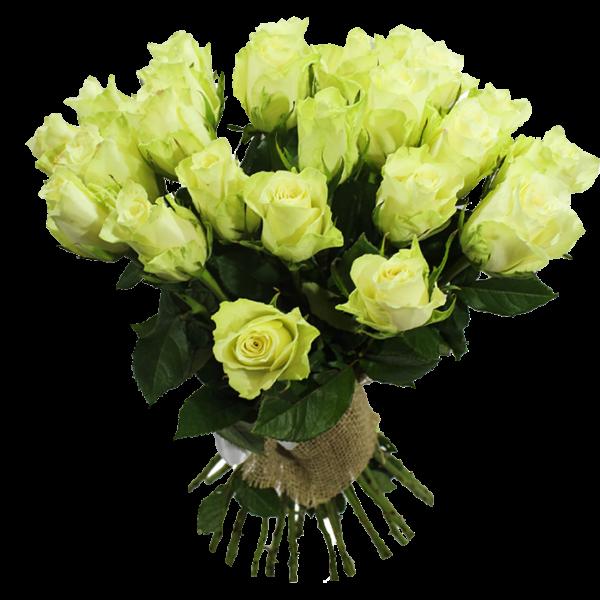 Роза 25 штук